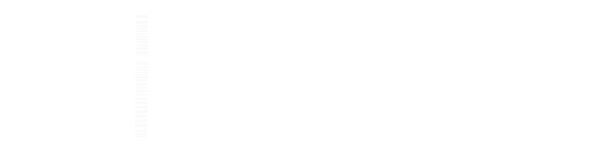 Logo CHILLIReisen weiß