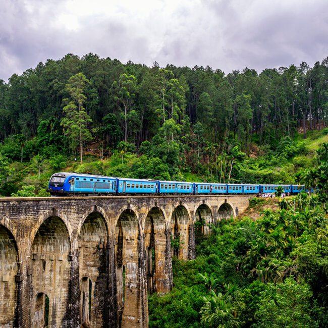 Blauer Zug im Dschungel von Sri Lanka